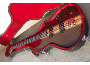 Aria Guitars SB 900