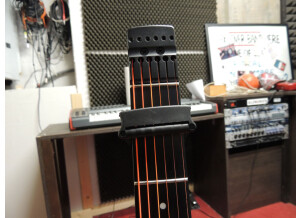 Steinberger ST-2FPA