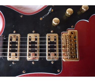 Alden Guitars taurus