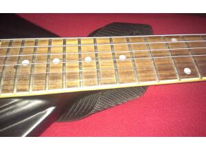 Switch Guitars Revolution
