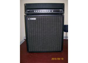 Yamaha G100