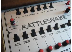 BME Rattlesnake