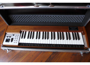 Analogue Systems RS 310