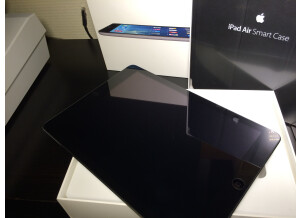 Apple iPad Air (17236)
