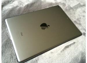 Apple iPad Air (22876)