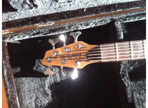 Washburn XB600